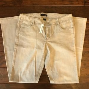 Gray/Silver Jean Never Worn NWT